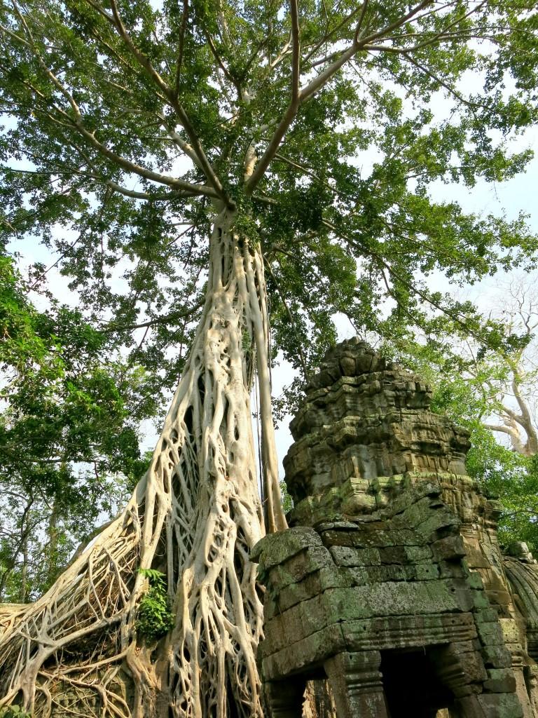 3 days in Siem Reap