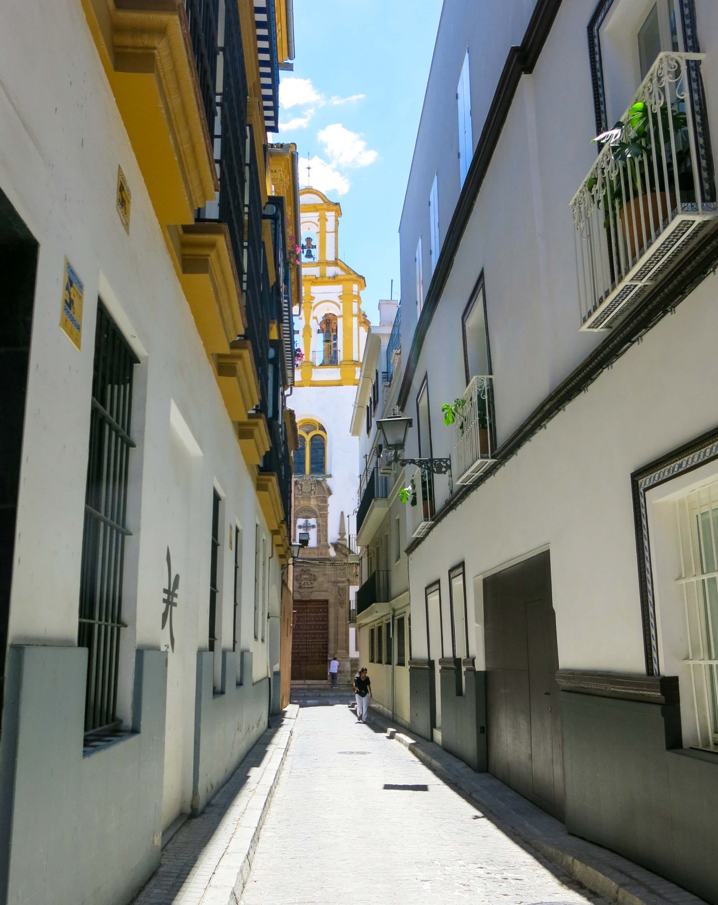 Hotel in the heart of Seville Old Town with a swimming pool on the roof terrace. And it's great value too!