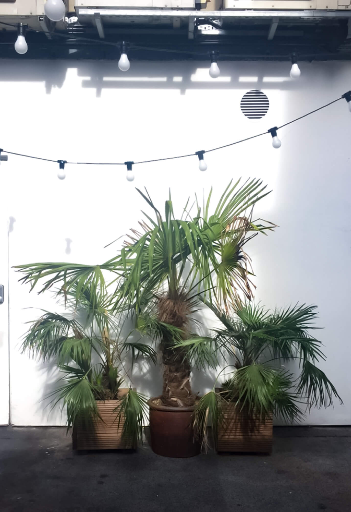 Tropical warehouse vibes in East London for brunch at Bistrotheque in Bethnal Green.