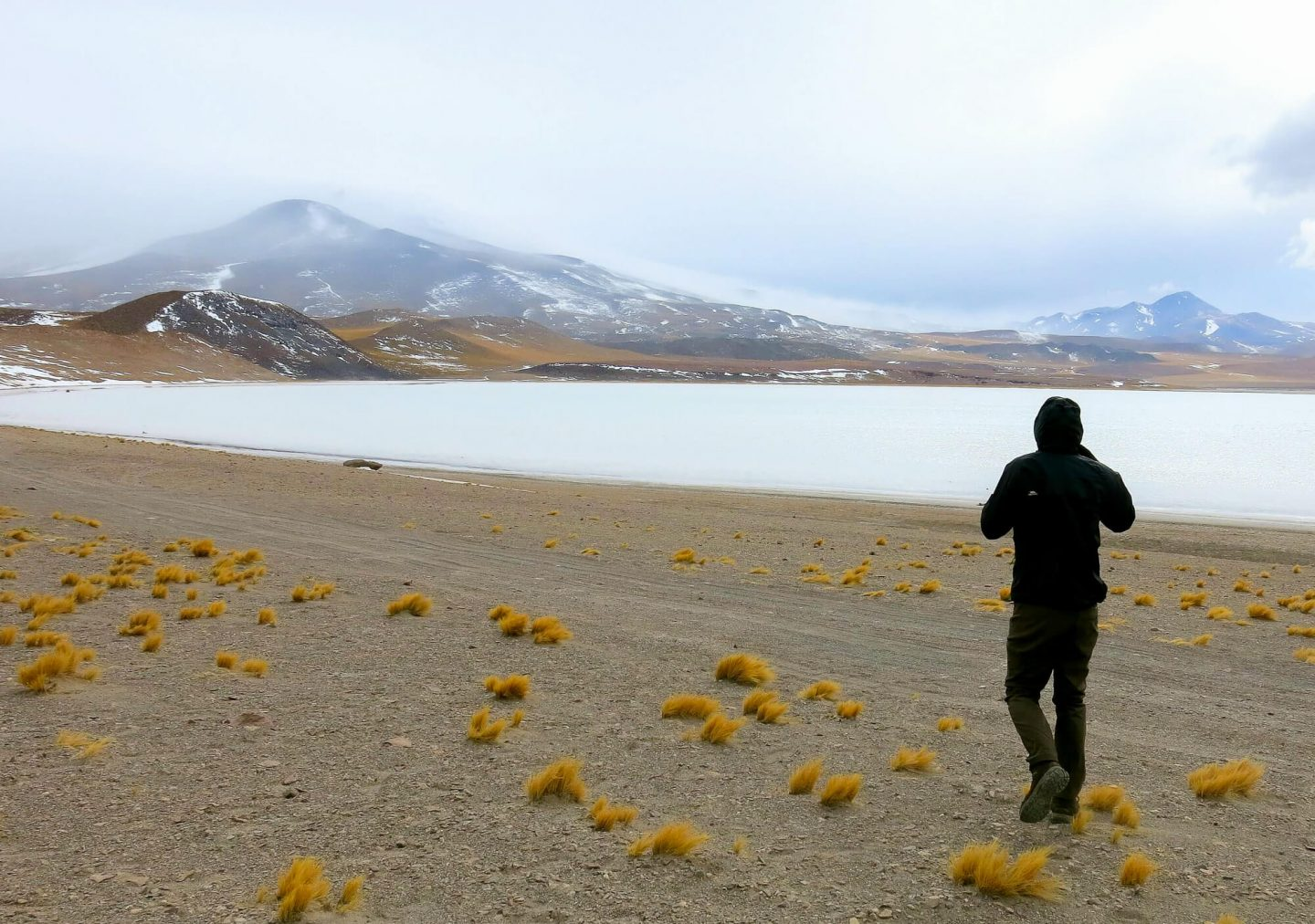 Find out which tours are the best to book in the Atacama Desert. Top tours in Atacama Desert.
