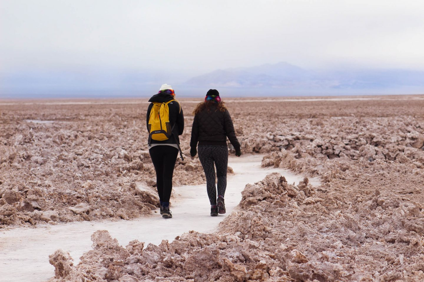 The Salar de Atacama, or Atacama Salt Flats are the largest salt flats in Chile. This as one of the many tours to book in the Atacama Desert.